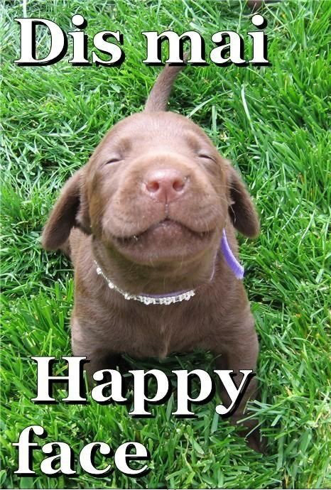 dog-with-happy-face-pic