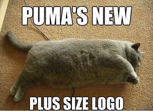 fat-cat-new-puma-logo-photo