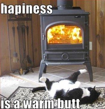 en varm røv er lykken