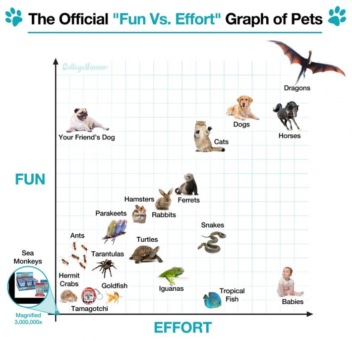 fun-effort-chart-of-pets