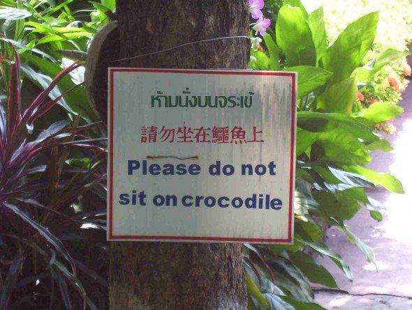 Er det for din skyld, eller for krokodillens skyld - Det er lidt svært at tyde for os...