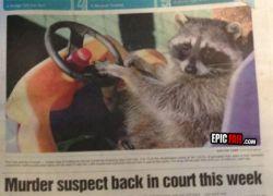 Har du set morderen?