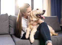 5 tips til at holde dit kæledyr sund og rask